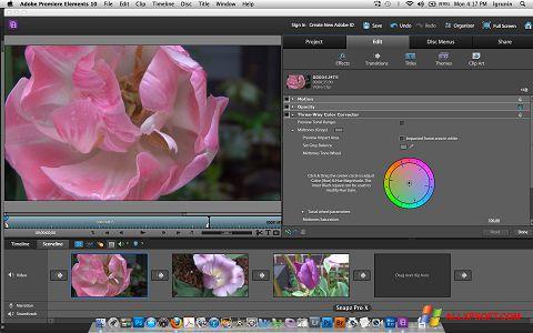צילום מסך Adobe Premiere Elements Windows XP