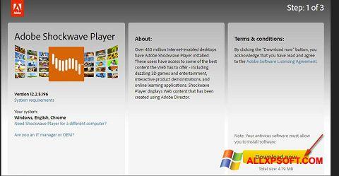 צילום מסך Adobe Shockwave Player Windows XP