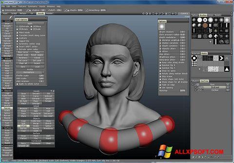צילום מסך 3D-Coat Windows XP