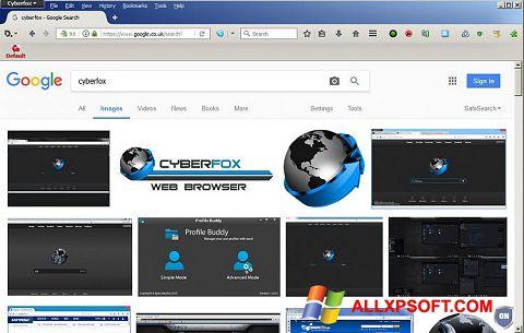 צילום מסך Cyberfox Windows XP