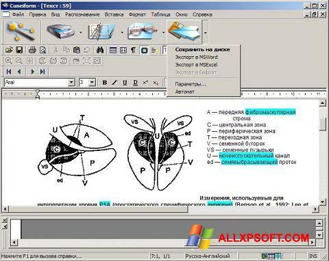 צילום מסך CuneiForm Windows XP