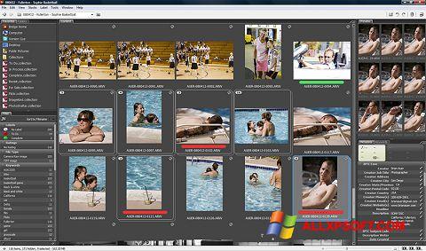 צילום מסך Adobe Bridge Windows XP