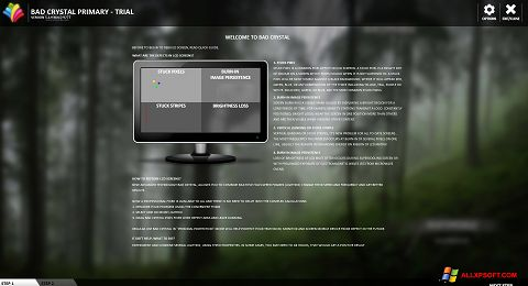 צילום מסך Bad Crystal Windows XP
