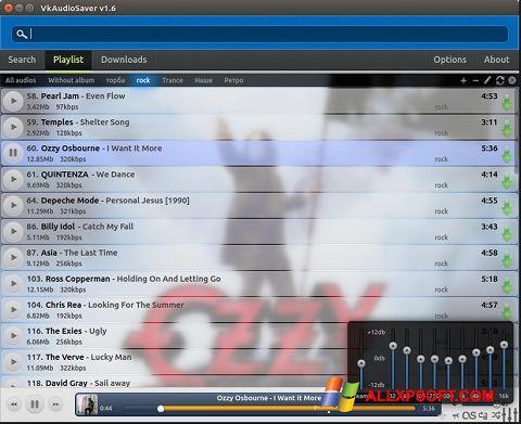 צילום מסך VkAudioSaver Windows XP