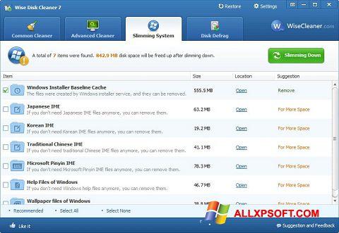 צילום מסך Wise Disk Cleaner Windows XP