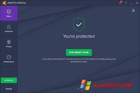צילום מסך Avast! Pro Antivirus Windows XP