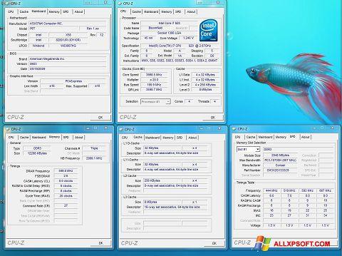 צילום מסך CPU-Z Windows XP