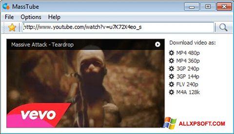 צילום מסך MassTube Windows XP