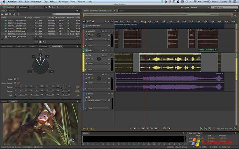 צילום מסך Adobe Audition Windows XP