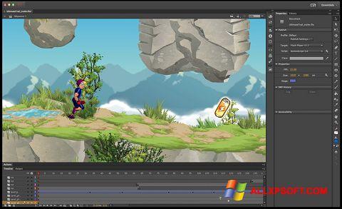 צילום מסך Adobe Flash Professional Windows XP