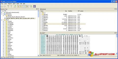 צילום מסך DMDE Windows XP